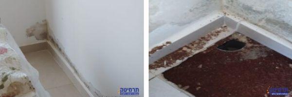 צילום לפני ואחרי הרמת אריח ברצפה